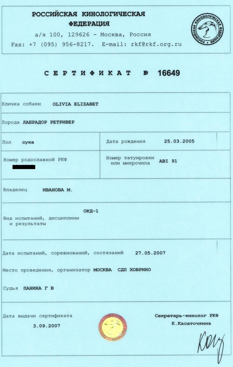 Оливия Элизабет выставки Международный рабочий сертификат